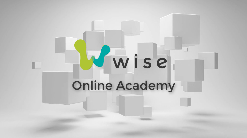 Wise Online Acadmey Logo: Text reads: Wise Online Academy, in front of a gray background with multiple light gray cubes floating above the floor.