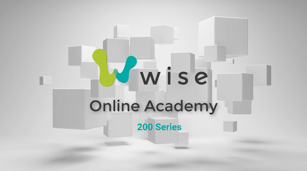 "Wise Online Acadmey Logo: Text reads: ""Wise Online Academy 200 series"", in front of a gray background with multiple light gray cubes floating above the floor."